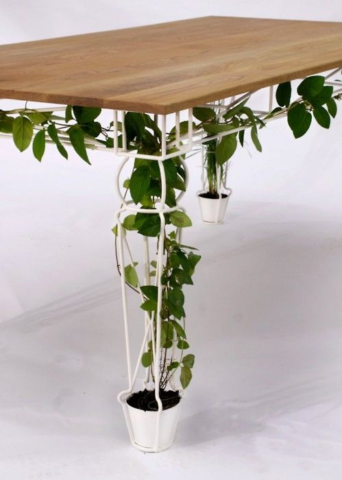 Tafelpoot staal met klimplant
