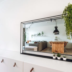 spiegel met stalen omlijsting frame 3d lijst