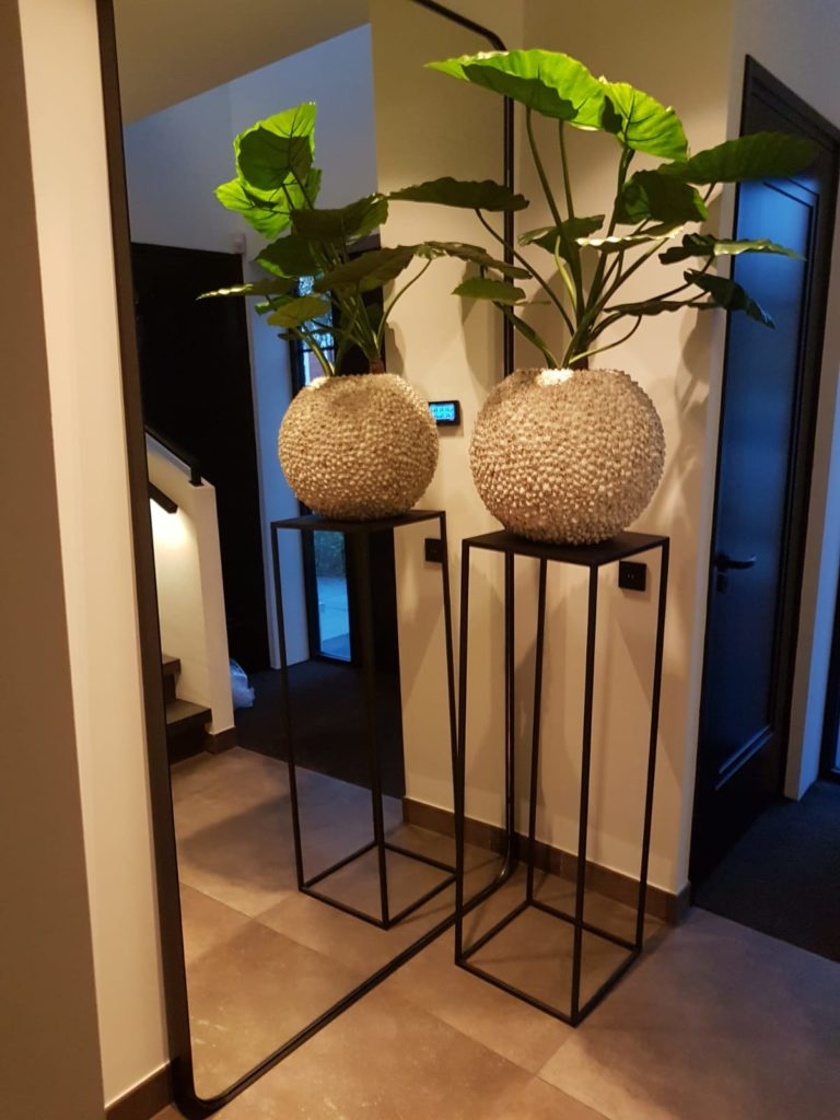Spiegel 250 cm hoog!