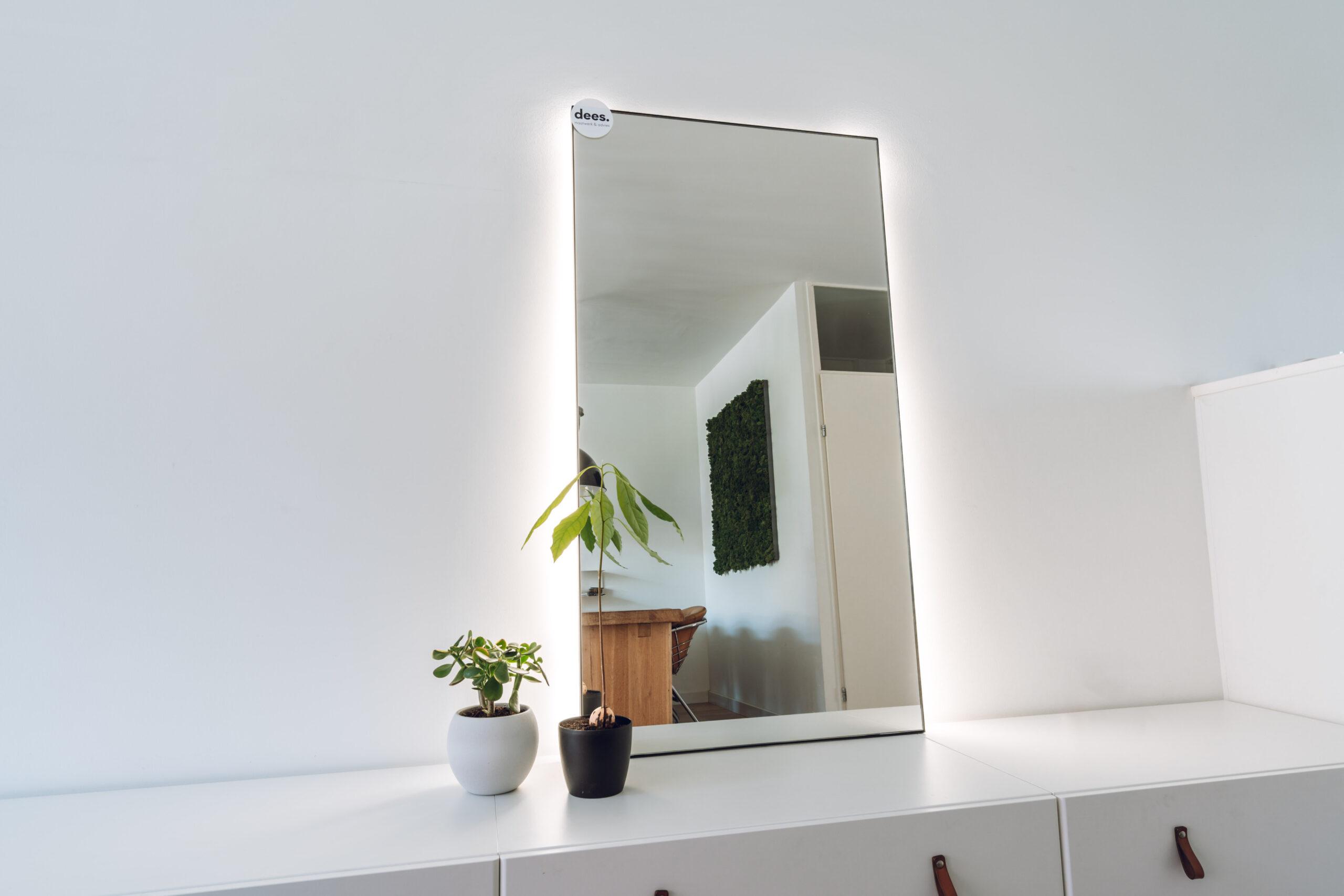 Spiegel 75 x 140 met LED (stekker)